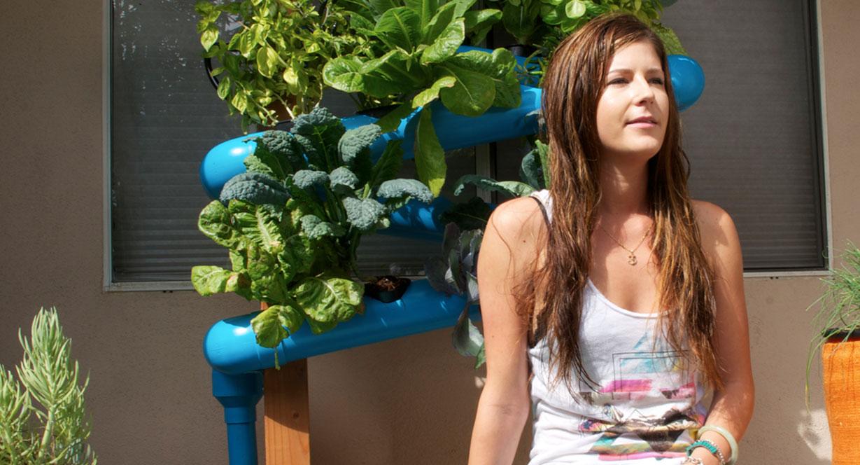 VEG DIY veggie gardens